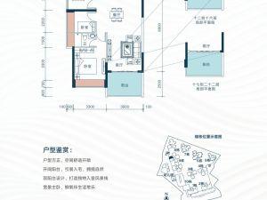 深圳星都梅沙天邸新房楼盘户型图57