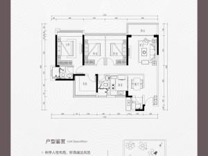 深圳龙光玖悦台新房楼盘户型图113
