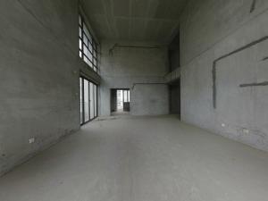 中海康城国际 4室2厅 274.38㎡_深圳龙岗区大运新城二手房图片