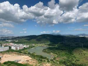 深圳今日国际新房楼盘实景图18