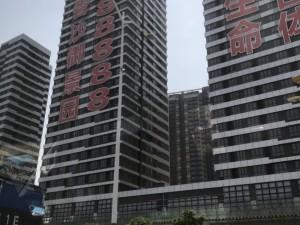 深圳今日国际新房楼盘实景图23